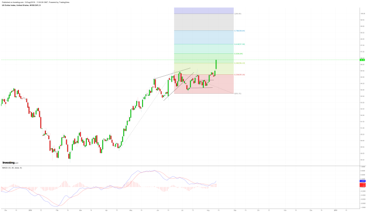 DXY-D